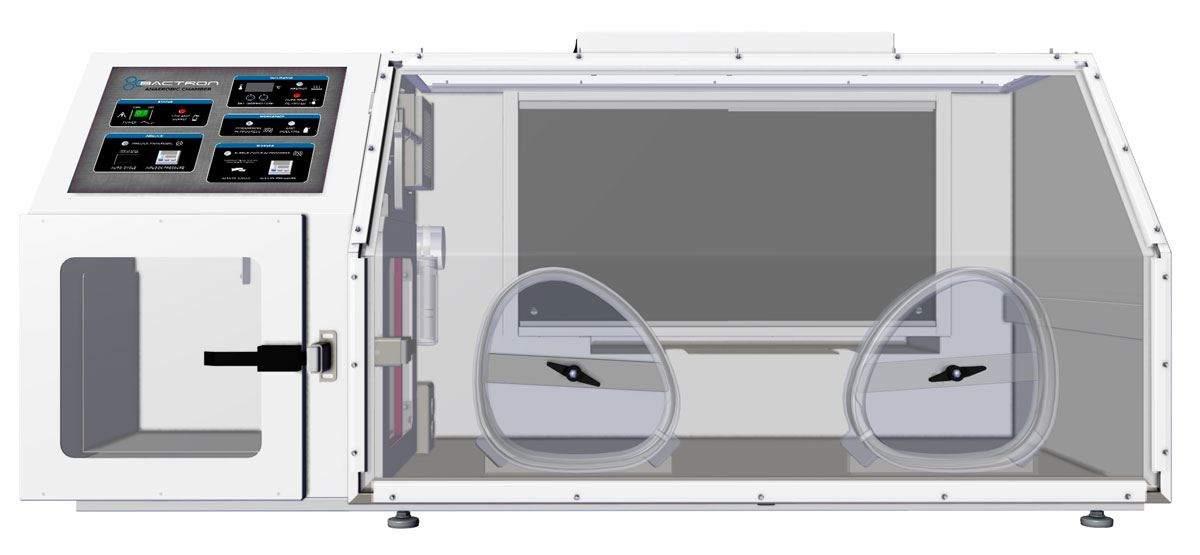Tủ nuôi cấy kỵ khí BACTRON300 Shellab | 453L 300 Plate