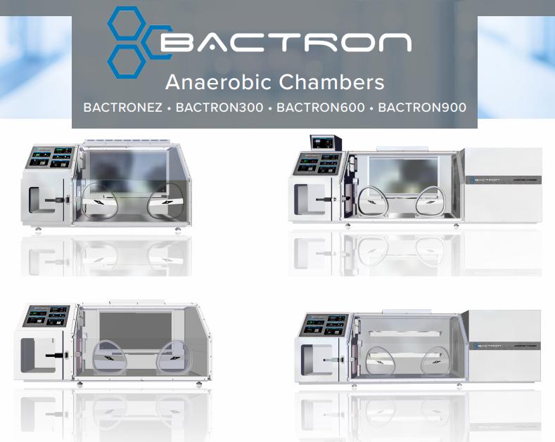 bactron